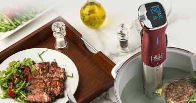 Kitchen Gizmo sous vide review