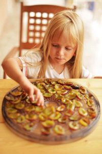 why-dehydrate-food-1