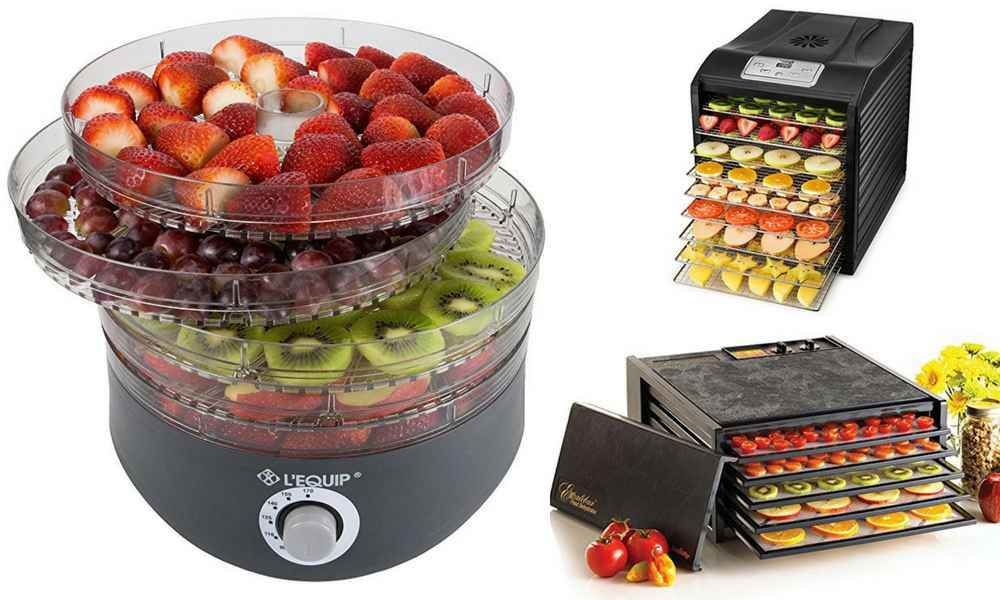 This food dehydrator buyer's guide has all the information you need in one place to choose the best model.